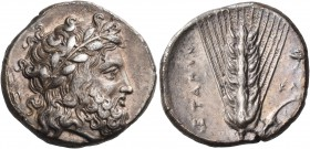 LUCANIA. Metapontum. Circa 340-330 BC. Didrachm or nomos (Silver, 20 mm, 7.88 g, 7 h), signed by the Kal... engraver. Laureate head of Zeus to right; ...
