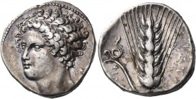 LUCANIA. Metapontum. Circa 340-330 BC. Didrachm or nomos (Silver, 19 mm, 7.82 g), signed by the Kal... engraver. Youthful head of Dionysos, three-quar...