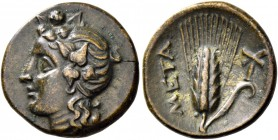 Metapontum. Bronze circa 300-275, Æ 2.54 g. Ivy-wreathed head of Dionysus l. Rev. META Barley-ear; in r. field, torch. Johnston 47. SNG ANS 593. Histo...