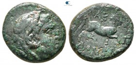 Kings of Macedon. Uncertain mint or Amphipolis. Time of Philip V - Perseus 187-167 BC. Bronze Æ