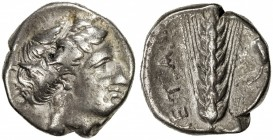 LUCANIA: Anonymous, ca. 340-330 BC, AR stater (7.52g), Metapontion, wreathed head of Demeter right // grain ear with leaf to right, META to left, Fine...