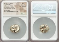 MYSIA. Cyzicus. Ca. 500-450 BC. EL stater (20mm, 16.25 gm). NGC VF 3/5 - 4/5. Dog (or wolf) at bay left, raising right forepaw, tail turned up over ba...