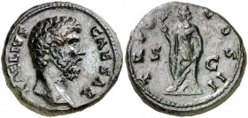 (137 d.C.). Aelio. As. (Spink 3993) (Co. 57) (RIC. 1067). 12,52 g. Campos repasados. (MBC+).