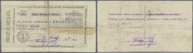 Armenia: Aleksandropol Government Corporation Bank 25 Rubles 1919, P.S691, highly rare note, taped and restored. Condition: F-