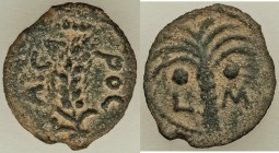JUDAEA. Roman Procurators. Marcus Ambibulus (AD 9-12). AE prutah (16mm, 1.95 gm, 11h). XF. Jerusalem, dated Regnal Year 40 of Augustus (AD 9/10). KAIC...