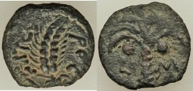JUDAEA. Roman Procurators. Marcus Ambibulus (AD 9-12). AE prutah (16mm, 1.47 gm, 11h). XF. Jerusalem, dated Regnal Year 40 of Augustus (AD 9/10). KAIC...