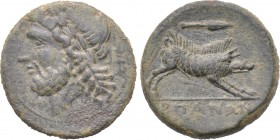APULIA. Arpi. Ae (Circa 325-275 BC). 