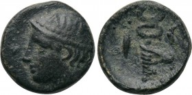 THRACE. Ainos. Ae (5th-4th centuries BC). 