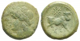 Northern Campania, Cales, c. 265-240 BC. Æ (20mm, 6.52g, 6h). Laureate head of Apollo l.; star to r. R/ Man-headed bull standing r., head facing; star...