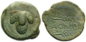 SPAIN. Acinipo. 1st century BC. (Bronze, 22 mm, 9.95 g, 10 h). Bunch of grapes. Rev. ACINIPO between two grain ears. SNG Copenhagen 190-191 var. Olive...
