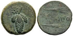 SPAIN. Acinipo. 1st century BC. (Bronze, 22.5 mm, 7.19 g, 3 h). Bunch of grapes; upper left, star. Rev. ACINIPO between two grain ears. SNG BM Spain 1...