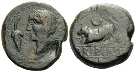SPAIN. Orippo. 1st half of 2nd Century BC. (Bronze, 31 mm, 32.26 g, 5 h). Male head to left, with bunch of grapes to his left. Rev. Bull butting to le...