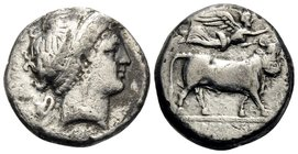 CAMPANIA. Neapolis. Circa 320-300 BC. Didrachm or nomos (Silver, 18 mm, 6.77 g, 9 h), Diophanes. Diademed head of nymph to right, wearing triple-penda...