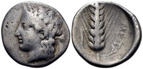 LUCANIA. Metapontum. Circa 400-340 BC. Didrachm or nomos (Silver, 22 mm, 7.40 g, 10 h). Youthful head of Dionysos to left, wearing a diadem adorned wi...