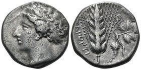 LUCANIA. Metapontum. Circa 400-340 BC. Didrachm or nomos (Silver, 20 mm, 6.29 g, 1 h), c. 370s. Head of Demeter to left, wearing necklace and with her...