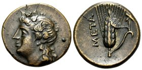 LUCANIA. Metapontum. Circa 300-250 BC. (Bronze, 16.5 mm, 2.86 g, 3 h). Ivy-wreathed head of Dionysos to left. Rev. META Ear of barley with leaf to rig...