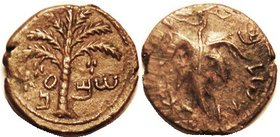 "JUDAEA , Bar Kokhba revolt, 134-35 AD, Æ26 (""Medium bronze"") Palm tree/Vine Leaf, Hend. 1437; VF, medium brown, nrly centered, a little wkness at left..."