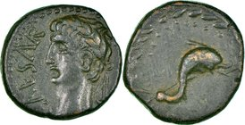 PHOENICIA. Berytus. Augustus (27 BC-AD 14). AE (13mm, 2.93 gm, 2h). NGC Choice XF 4/5 - 4/5. CAESAR, laureate head of Augustus left / Dolphin and trid...