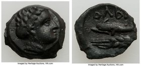 SCYTHIA. Olbia. Ca. 325-320 BC. AE (15mm, 2.48 gm, 12h). XF. Laureate head of Apollo right / OΛBI[O], dolphin left; barley grain below. Anokhin 284.  ...