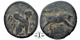 Caria, Caunos. AE