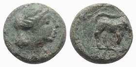Gaul, Massalia, c. 121-49 BC. Æ (9mm, 1.62g, 6h). Laureate head of Apollo r. R/ Bull butting r. SNG Copenhagen 819-21. Green patina, near VF