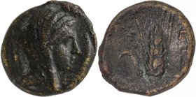LUCANIA, METAPONTION, c. 350-320 BC. AE 15.