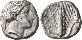 LUCANIA. Metapontion. Circa 340-330 BC. Didrachm or Nomos (Silver, 19 mm, 7.82 g, 4 h). Head of Demeter to right, wearing wreath of grain ears, triple...
