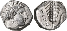 LUCANIA. Metapontion. Circa 340-330 BC. Didrachm or Nomos (Silver, 19 mm, 7.81 g, 11 h). Head of Demeter to right, wearing wreath of grain ears, tripl...