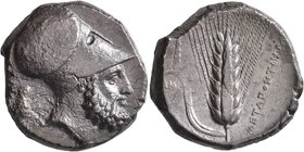 LUCANIA. Metapontion. Circa 340-330 BC. Distater (Silver, 24 mm, 15.51 g, 5 h). Bearded head of Leukippos to right, wearing Corinthian helmet decorate...