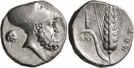 LUCANIA. Metapontion. Circa 340-330 BC. Didrachm or Nomos (Silver, 20 mm, 7.86 g, 1 h). Bearded head of Leukippos to right, wearing Corinthian helmet;...