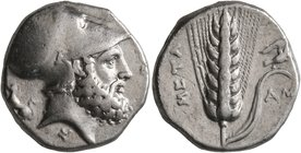 LUCANIA. Metapontion. Circa 340-330 BC. Didrachm or Nomos (Silver, 19 mm, 7.87 g, 1 h). [ΛEYKIΠΠOΣ] Bearded head of Leukippos to right, wearing Corint...
