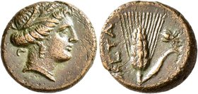 LUCANIA. Metapontion. Circa 300-250 BC. AE (Bronze, 15 mm, 2.84 g, 1 h). Head of Demeter to right, wearing wreath of grain ears and leaves. Rev. META ...