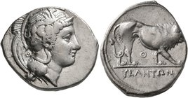 LUCANIA. Velia. Circa 340-334 BC. Didrachm or Nomos (Silver, 23 mm, 7.44 g, 3 h). Head of Athena to right, wearing crested Attic helmet adorned with a...