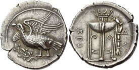 Croton