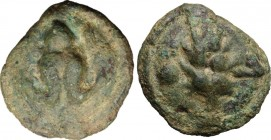 Greek Italy. Northern Apulia, Luceria. AE Cast Uncia, 217-212 BC. D/ Frog. R/ Corn-ear; to left, pellet. HN Italy 677e. Vecchi 349. AE. g. 12.05 mm. 2...