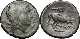 Greek Italy. Northern Apulia, Salapia. AE 21mm, 225-210 BC. D/ Head of Apollo right, laureate. R/ Horse walking right; above, trident. HN Italy 692a. ...