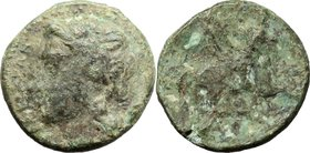 Sicily. Syracuse. Timoleon and the Third Democracy (344-317 BC). AE 10mm. D/ Head of Apollo left. R/ Pegasus right. CNS II, 89. AE. g. 0.86 mm. 10.00 ...