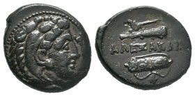 "Kings of Macedon. Alexander III ""the Great"" 336-323 BC. Ae  Condition: Very Fine  Weight: 6.64gr Diameter: 20.11mm"