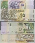 Albania: Set with 4 banknotes 1000, 2000 and 2x 5000 Leke 1996-2007, P.66, 69, 70, 74a, 1000 and 2000 Leke in UNC, both of the 5000 in VF+/XF. (4 pcs....