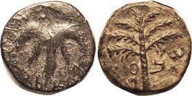 "JUDAEA, Bar Kokhba revolt, 134-35 AD, Æ25 (""Medium bronze"") Palm tree/Vine Leaf, Hend. 1437; AVF/VF-EF, greenish-brownish patina with earthen hilighti..."