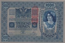Austria, 1.000 Kronen, 1919, UNC, p59