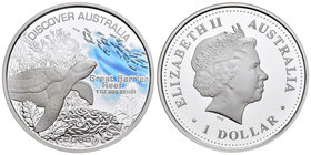 Australia. Elizabeth II. 1 dollar. 2006. Perth. P. (Km-944). Ag. 31,11 g. Partial coloured. Great barrier reef. PR. Est...40,00.