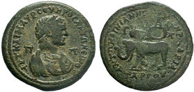 CILICIA, Tarsus. Caracalla. AD 198-217. AE Bronze . Struck AD 215-217. AVT KAI M AVP CЄVHPOC ANTΩNЄINOC / Π Π. Mantled bust right, wearing demiourgic ...