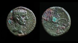 MYSIA, Kyzikos: Uncertain emperor (Caligula, Augustus or Claudius), 1st century CE. 2.48g, 15mm.