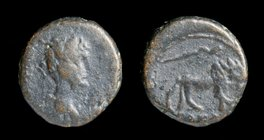 JUDAEA, Caesarea Maritima: Hadrian (117-138 AD), AE12. 2.72g, 12mm.
