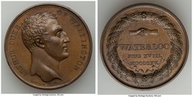 """The Duke of Wellington and Waterloo"" bronze Medal 1815 UNC, Bram-1645. 40mm. 37.64gm.   HID09801242017"