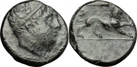 Sicily.Syracuse.Agathokles (317-289 BC).AE, 310-304 BC.D/ Head of young male right, diademed.R/ Lion standing right; above, club.SNG Cop. 769.AE.g. 4....