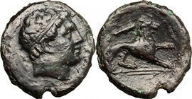 Sicily.Syracuse.Agathokles (317-289 BC).AE 24 mm., 295-289 BC.D/ Diademed head of Herakles right; bow behind.R/ Lion right; club above, spear in exerg...