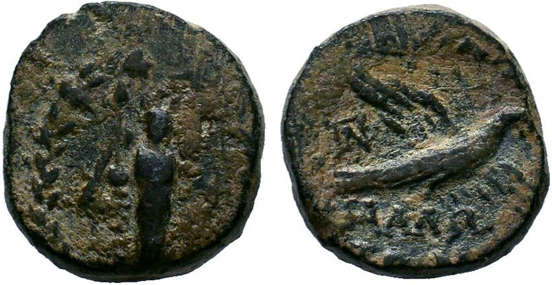 CILICIA. Mallos. AE. Obv: Facing statue of Athena Megarsis within wreath. Rev: M...