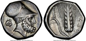 LUCANIA. Metapontum. Ca. 340-330 BC. AR stater (20mm, 7.78 gm, 1h). NGC Choice VF 5/5 - 4/5. Ap- and Ami-, magistrates. Head of Leucippus right, weari...